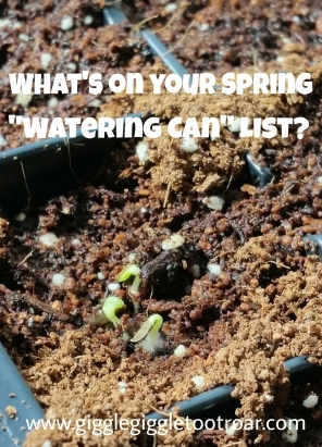 What's on Your Spring Watering Can List?